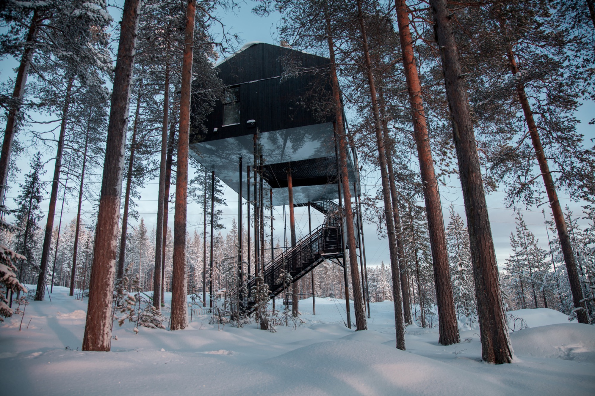 Treehotel's 7th room in Sweden / Photo by Johan Jansson