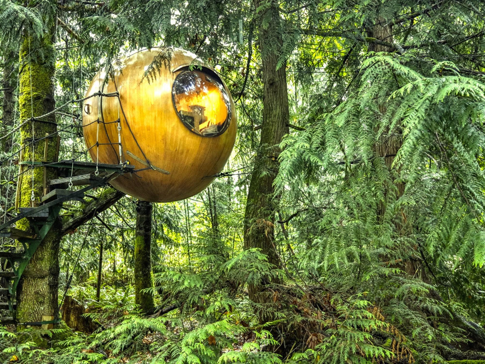 Spherical tree house by Free Spirit Spheres / Photo Courtesy of Free Spirit Spheres