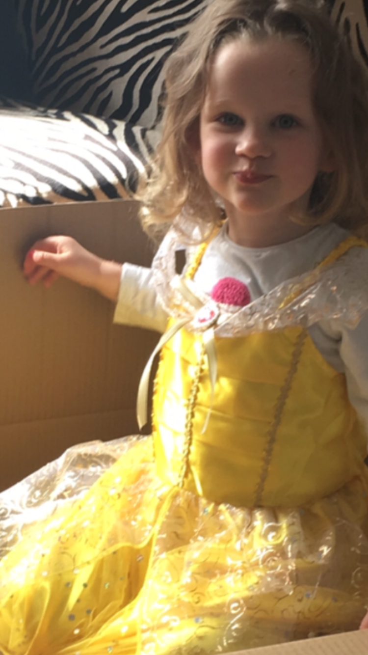 FOREVER IN MY HEART - After a relatively short battle with DIPG, Sophie-Hélène passed away after just four months – she never made the nine months we'd hoped for. On the 24th of September 2018, at 11:50am, Sophie-Hélène passed away at the hospice, whilst in my arms listening to her favourite song, Let it Go.Sophie-Hélène is an inspiration. She's the strongest person I've ever met. We all enjoyed a wonderful four and a half years together, and Sophie-Hélène made a huge difference to the world around her – her life was worth it, she taught us all such valuable lessons and I would give anything to have her back again.I've decided to celebrate Sophie-Hélène's life by throwing a ball. Sophie-Hélène showed so much zest in her character and a ball is the perfect opportunity to bring people together to celebrate the life of Sophie-Hélène. But it's not just a party to celebrate the courageous spirit we've lost, it's about making a difference towards stopping other children going through what Sophie-Hélène went through.In 1962 Neil Armstrong, the first man to walk on the moon, lost his three year old daughter to DIPG – yet 56 years later little research has gone into DIPG and it is still no closer to finding a cure – I want to help change that.