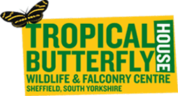 Tropical Butterfly House.png