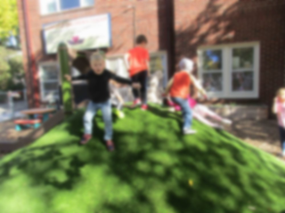 Kids love the hill.jpg