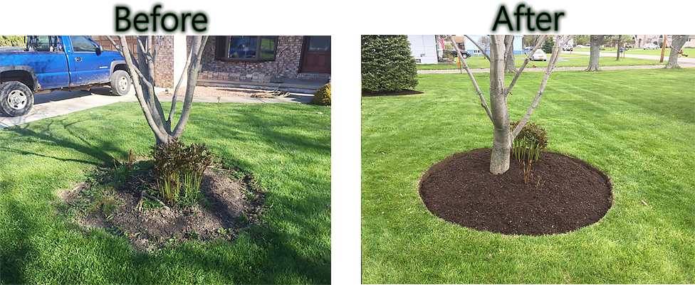 western new york landscaping before after