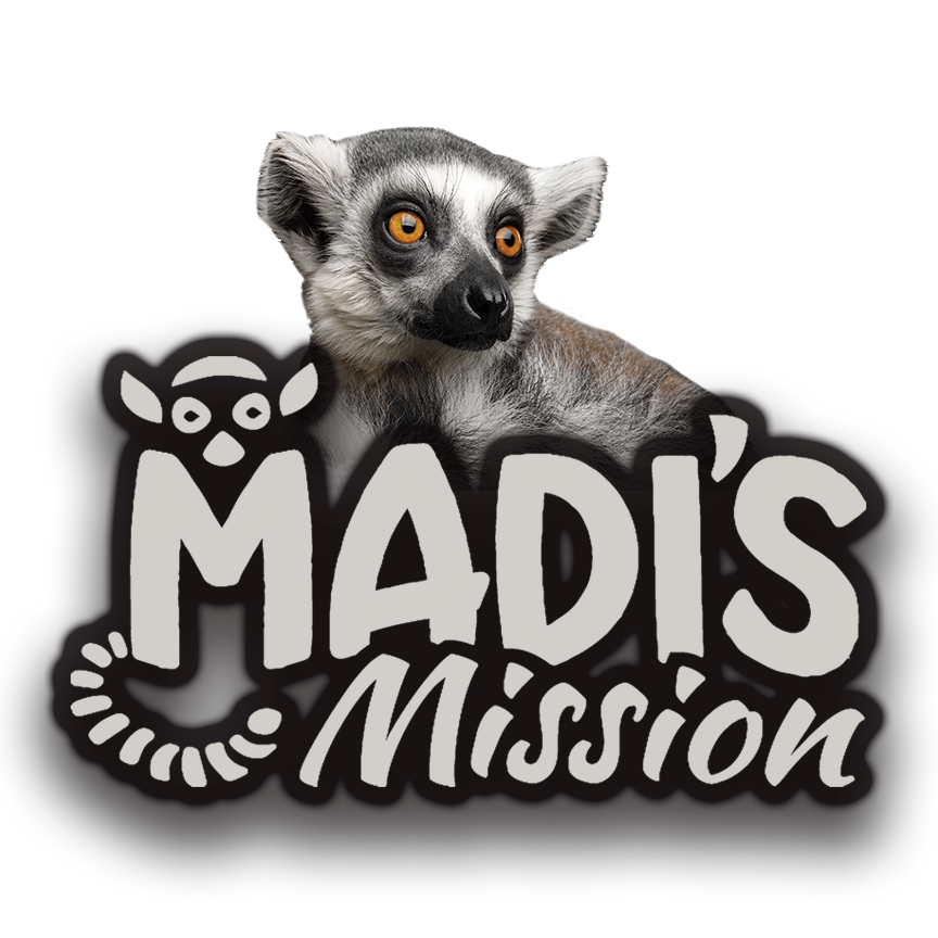 Madi's Mission - Madi is our beloved ring tailed lemur ambassador whose non-profit mission helps raise awareness for the dire need of conservation in Madagascar. With 80% of Malagasy wildland having been destroyed, Madi's interactions help support forest restoration projects, eco-incentivizing local outreach, education programs and scholarship funds.See what Madi is currently doing to save his wild family!
