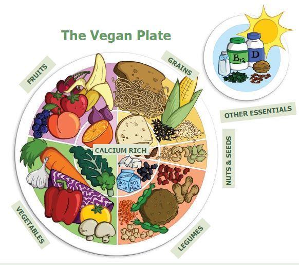 veganplate2.jpg