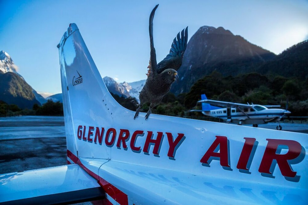 Milford: Fly-Cruise-Fly -