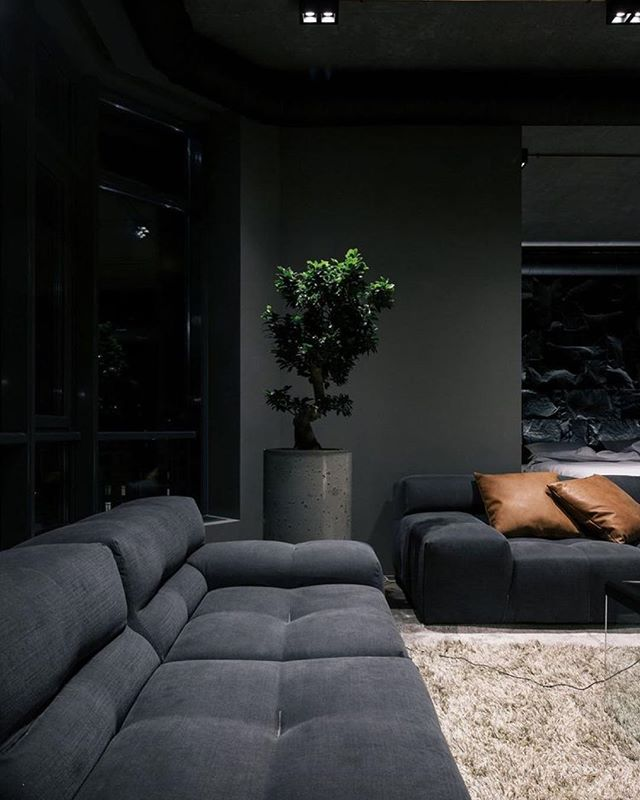 Moody AF | Wish I could have a black sofa but Wywys shedding takes over 🤷🏽♀️ | #rp vía Pinterest