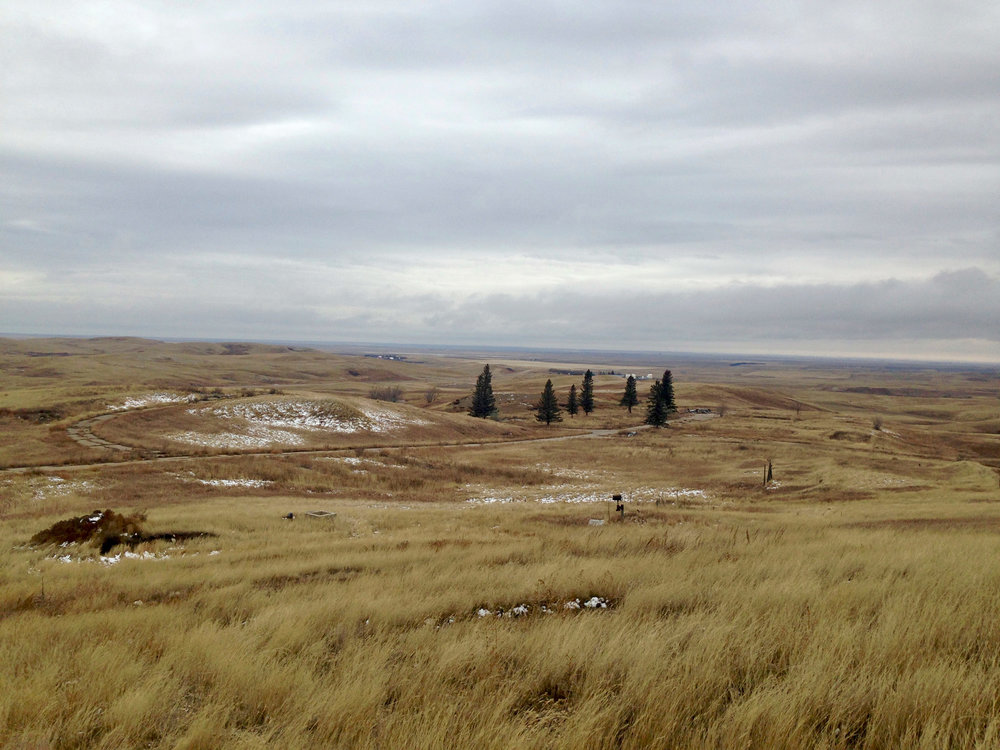 Northern fringes of the oil patch, Divide County, ND