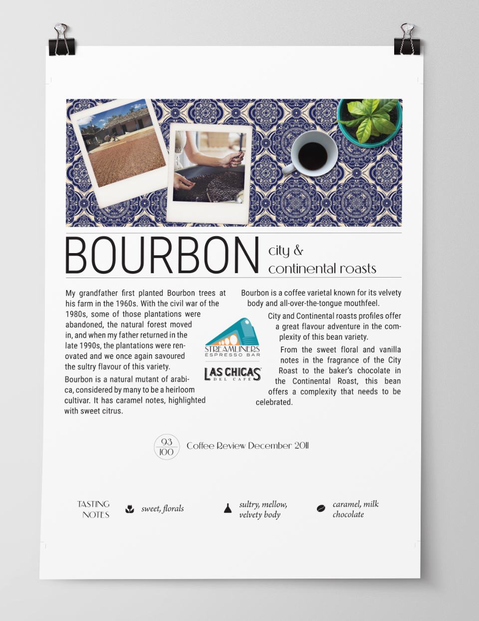 Coffee Bean Profile Poster Design 1