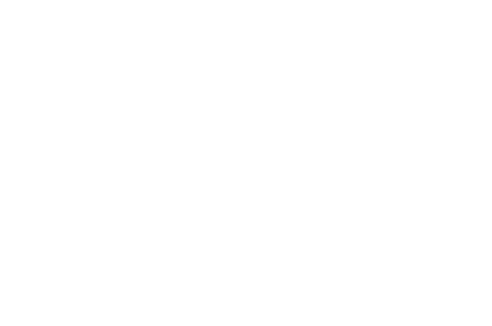 2018_bnmwf_official_selection_w+t.png