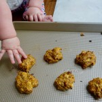 sweet potato pineapple flax bites baby2.jpg