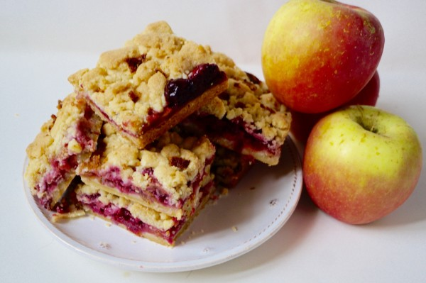 cranberry apple bacon bar dishitgirl.jpg