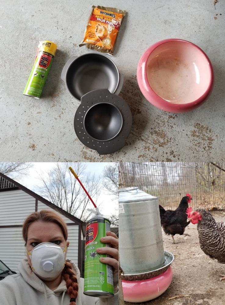 Chicken water.jpg