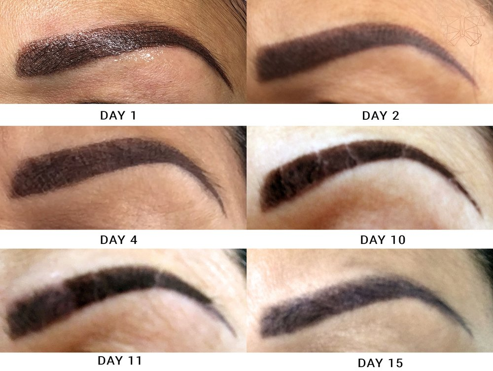how my brows healed after the ombré procedure