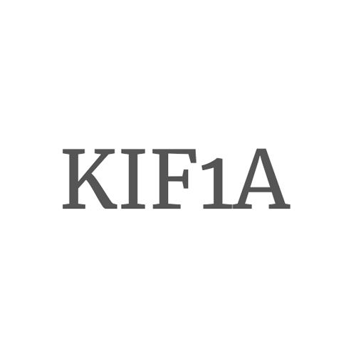 logo_kif1a.jpg