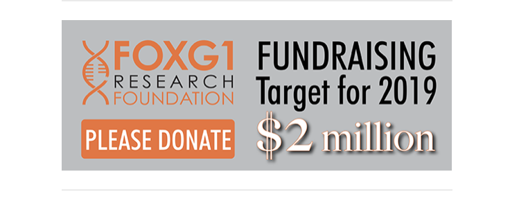 www.foxg1research.org/donate