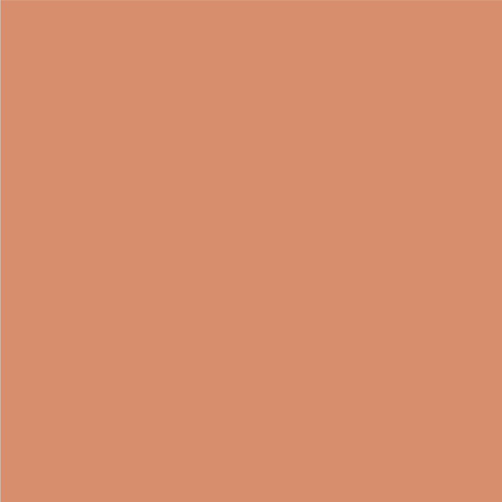 BG-SQ-Dusty-Peach.jpg