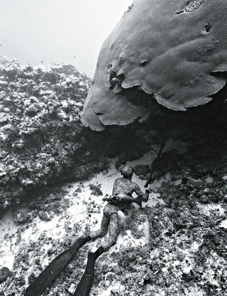 spearfishing in Fiji, 2009. Photograph by Kanoa Zimmerman