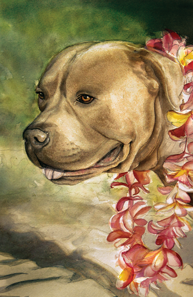 Nui, the family dog.