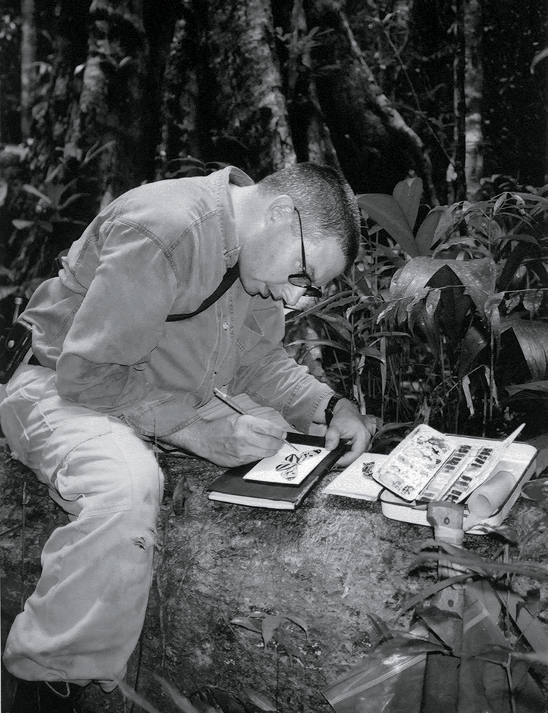 Mark Dion in the rainforest, Guyana. Photograph by Bob Braine