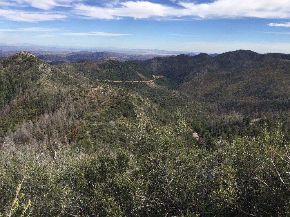 Black Range Lodge mountaintop view.jpg