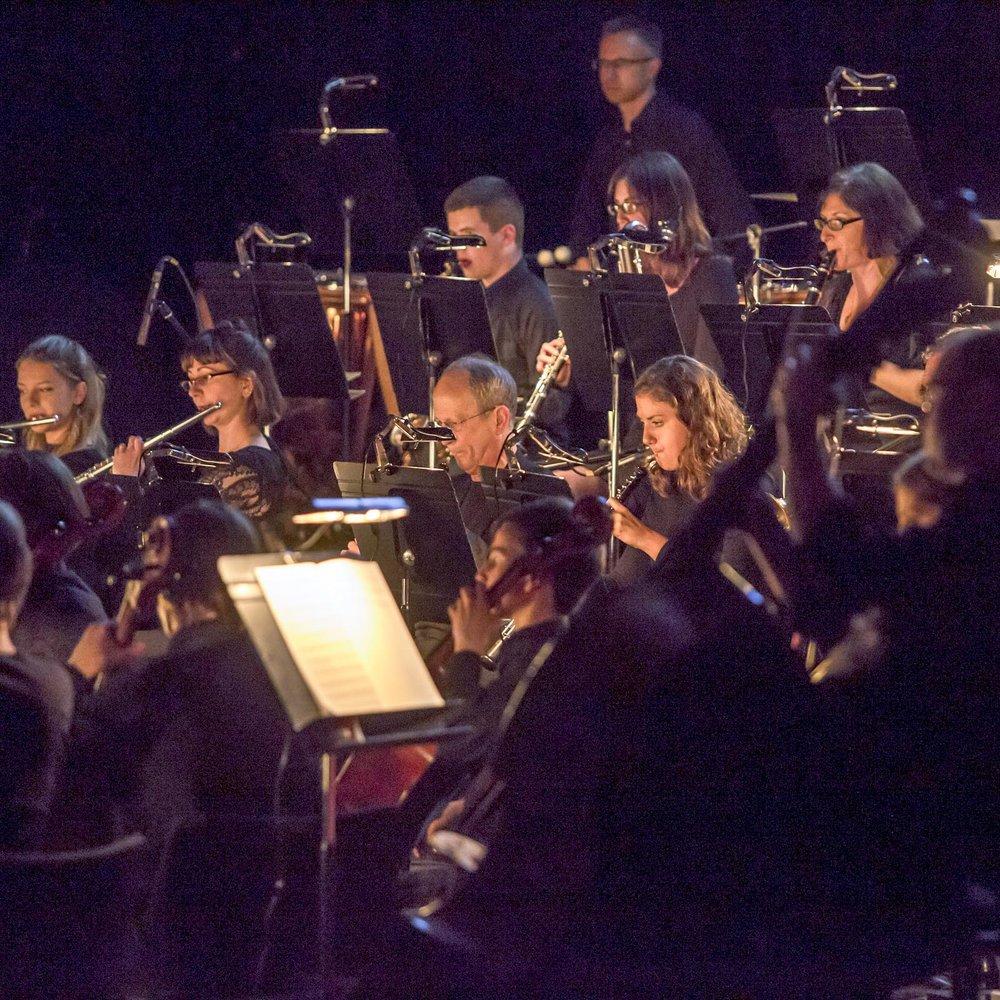 Brighton symphony orchestra -