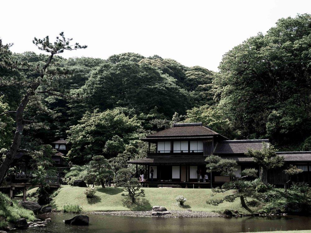 blogpost-japan-3.jpg