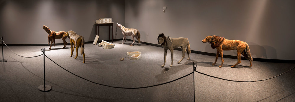 Coy Wolves , installation of Trespass at New Brunswick Museum, 2010  Photo: Jeff Crawford