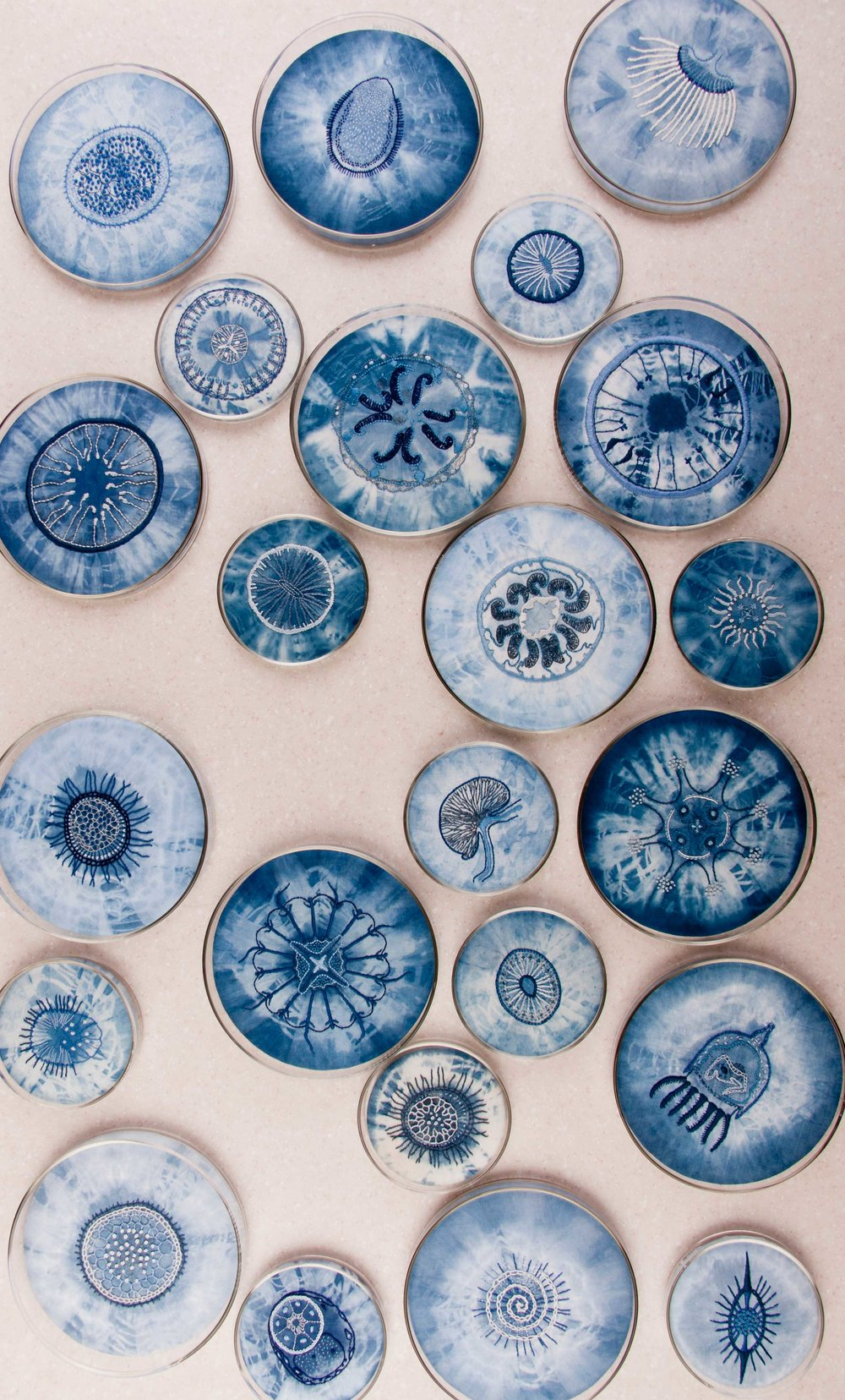 Labouratoire,  indigo tie-dye and cotton embroidery on cotton and linen, glass Petri dishes, table, 2007  Photo: Jeff Crawford