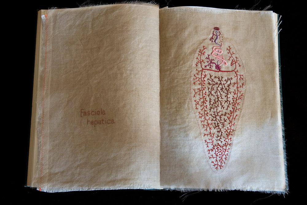 Diagram of a Parasite,  2006, embroidery on silk organza and linen, found book, open book measures: 24 x 34 x 4 cm  Photo: Roger Smith