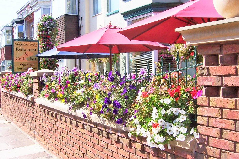 Front Garden 3.JPG