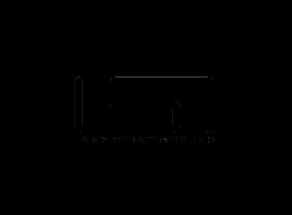 LSI Logo padded.jpg