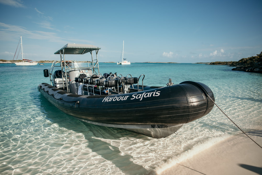 """Our boat for the day! It was a rough ride going about 60mph for the 2.5 hour ride out to Exuma from Nassau. The company we booked through was  Harbour Safaris  and """"Grouper"""" was our captain. I would highly recommend!"""