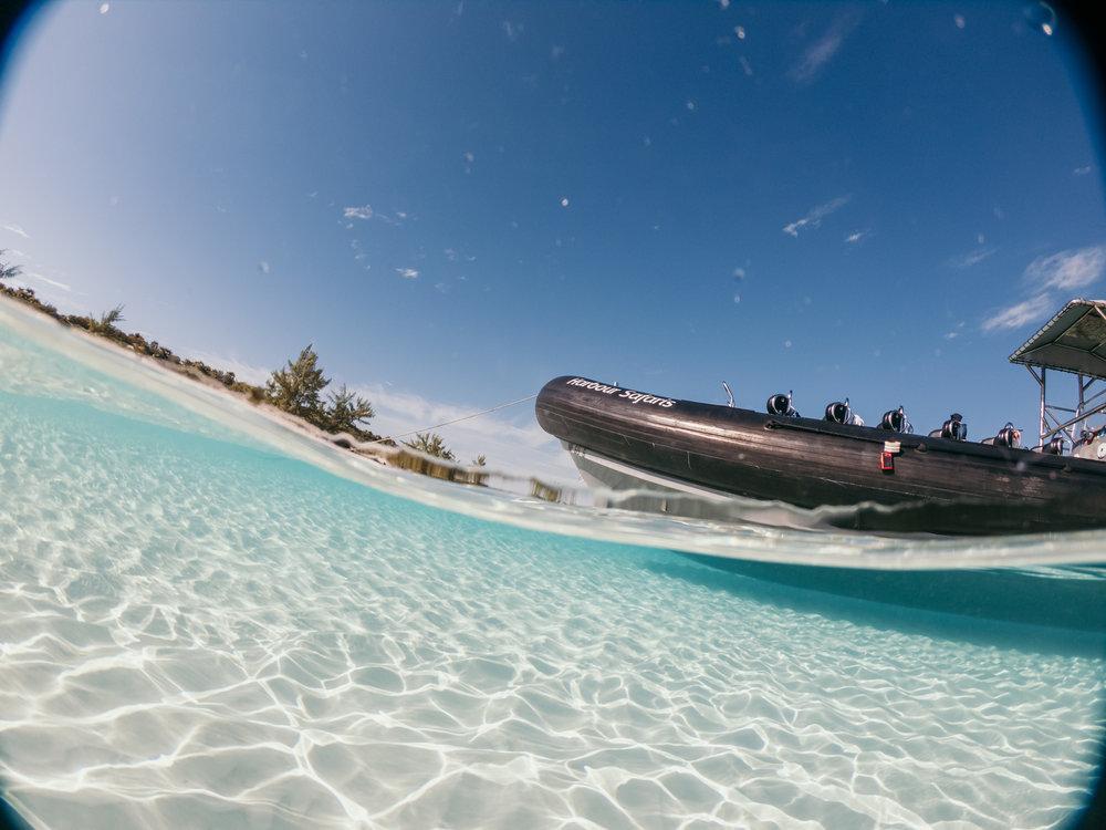 bahamas-vacation-in-exuma-pig-beach-2019GOPR0184.jpg
