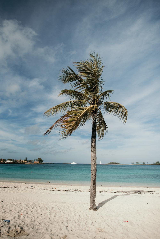bahamas-vacation-in-nassau-2019DSC_5440.jpg
