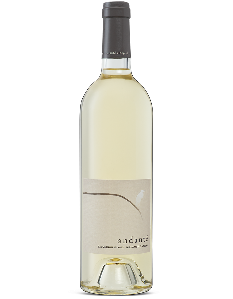 andanté-vineyard-our-wines-sauvignon-blanc.png
