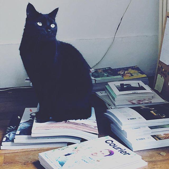 Égérie  #MagazineLovers #ahoy #cat