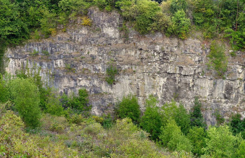 Dale Quarry #3, 2011