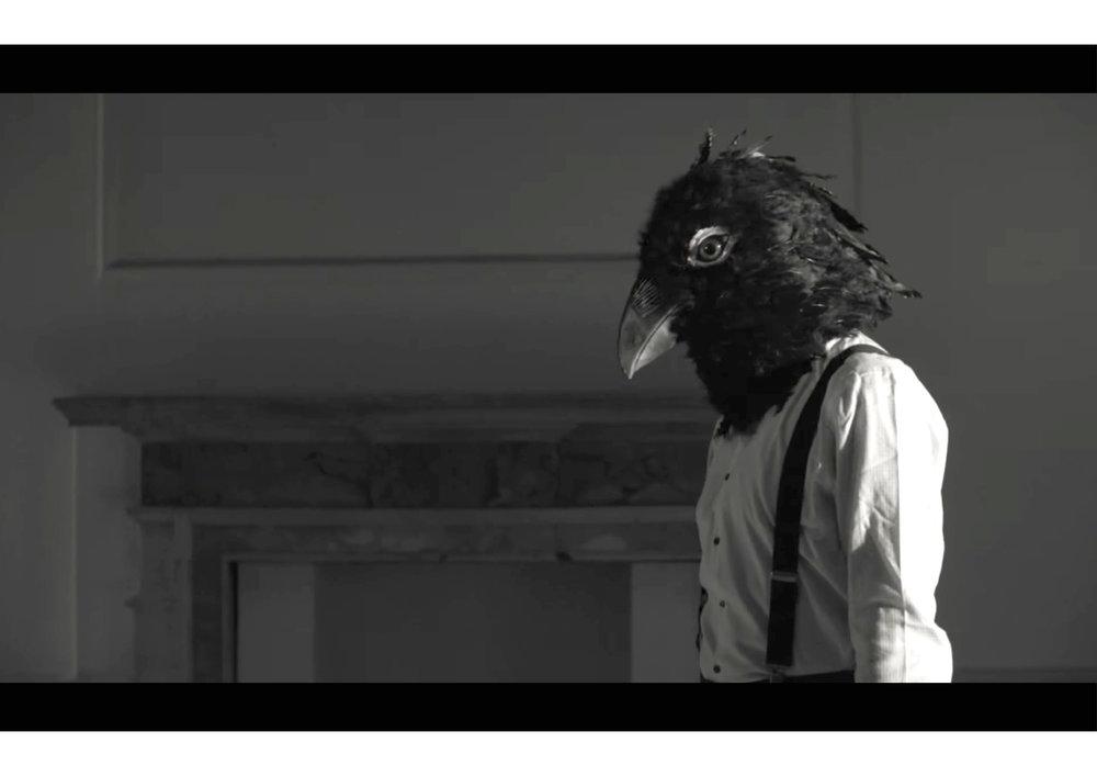 bird head-02.jpg