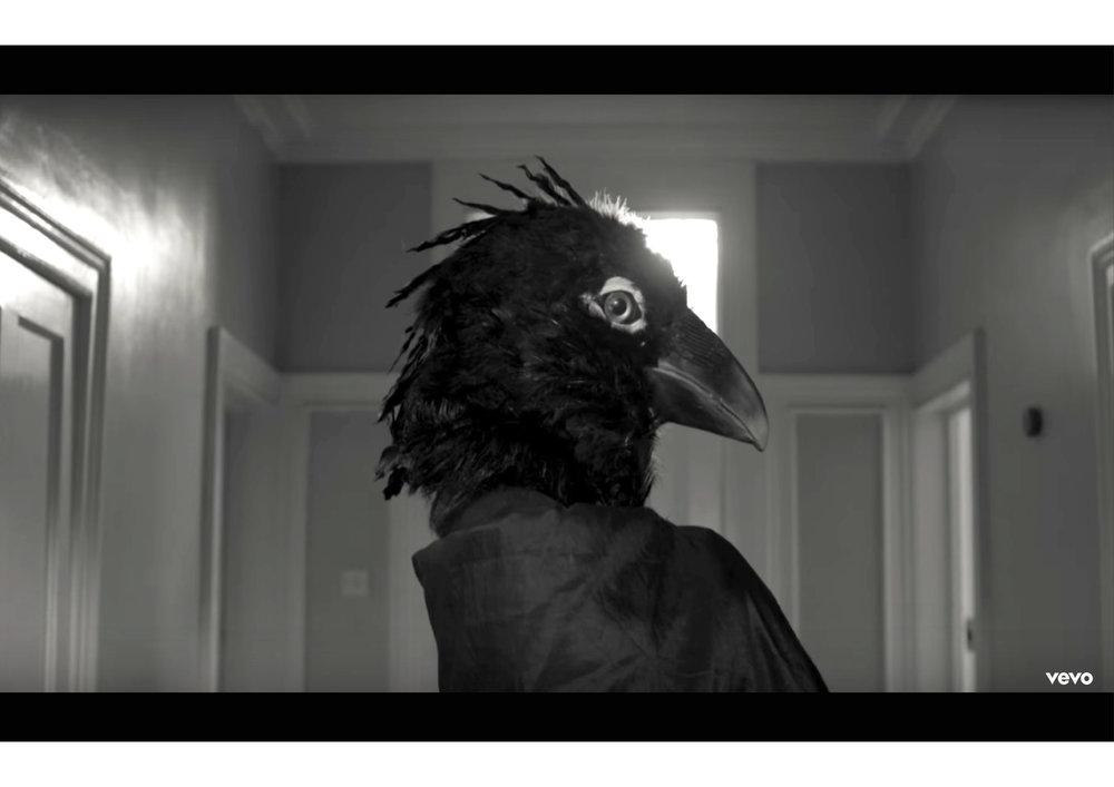 bird head-05.jpg