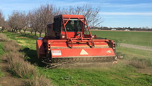 Orchard Brush Shredding - We utilize Flory shredders with high horse power to handle larger wood in almond, walnut, and pistachio orchards.