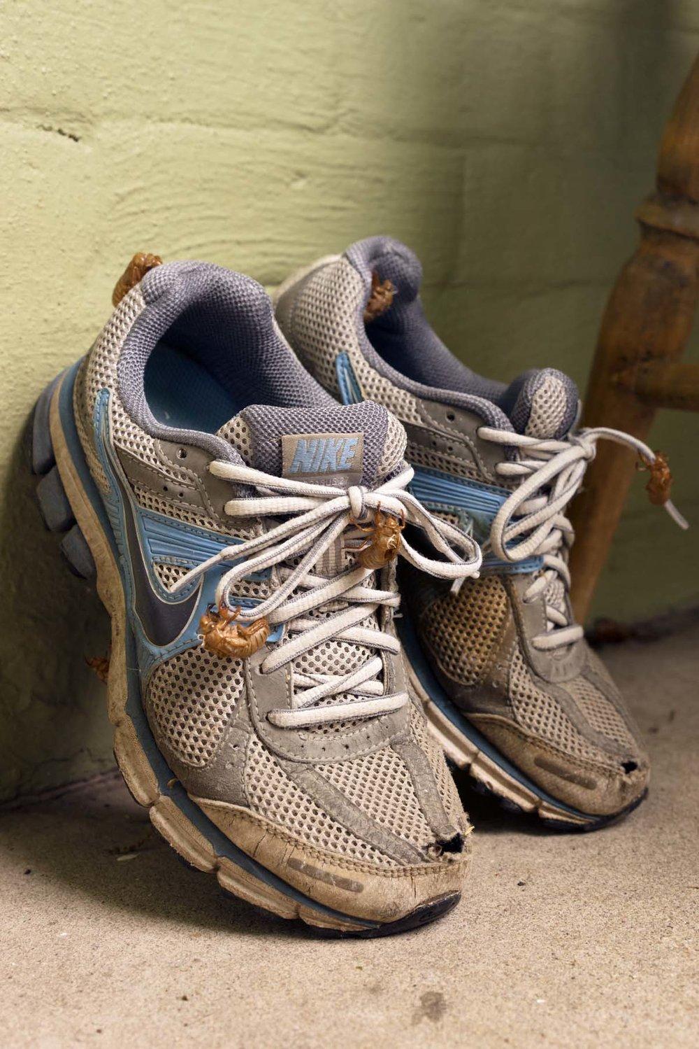 Nikes, 2016