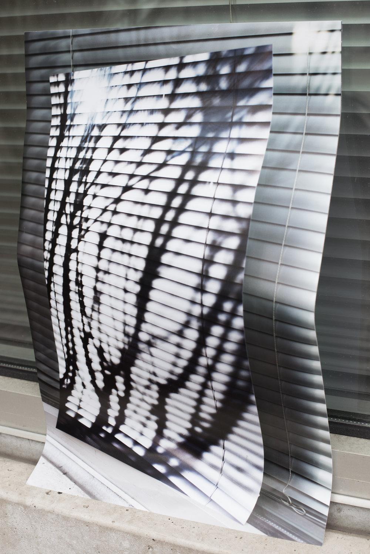 Window Trio, 2017