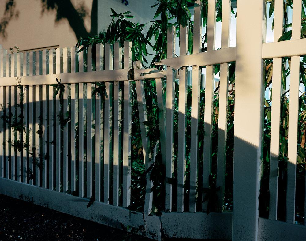 Cracked Fence, 2016