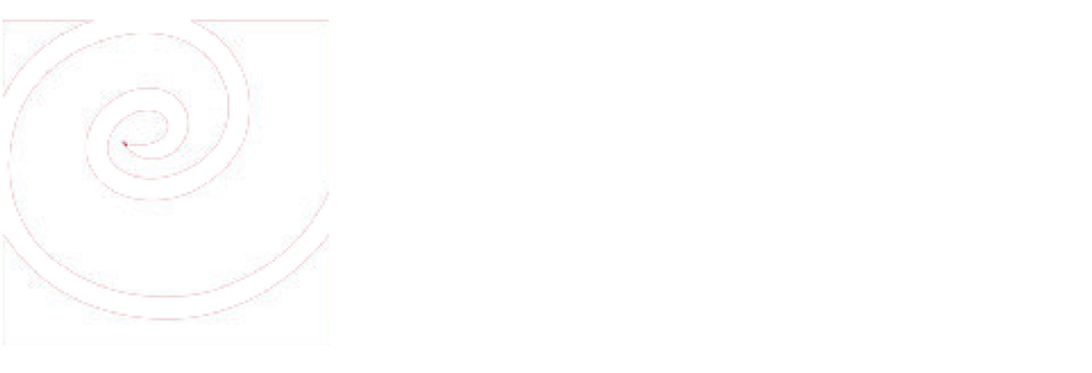 American Evaluation Association logo white.png