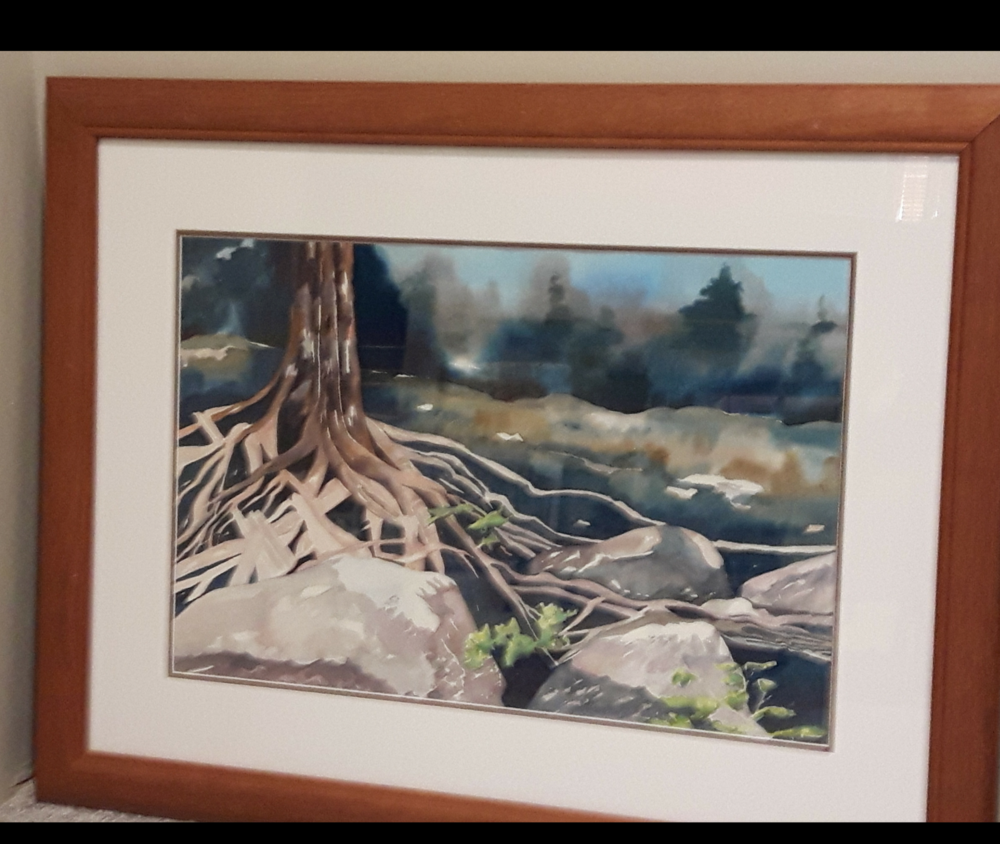 """GET TO THE ROOT:  Watercolour. Framed. 23""""x 29"""""""