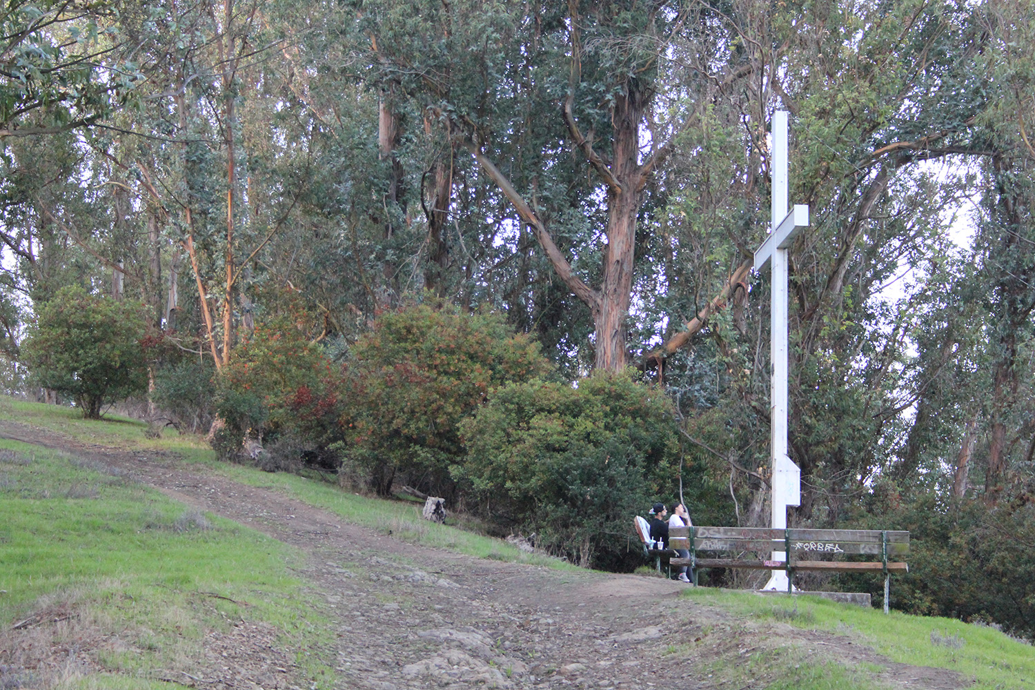 albany hill cross