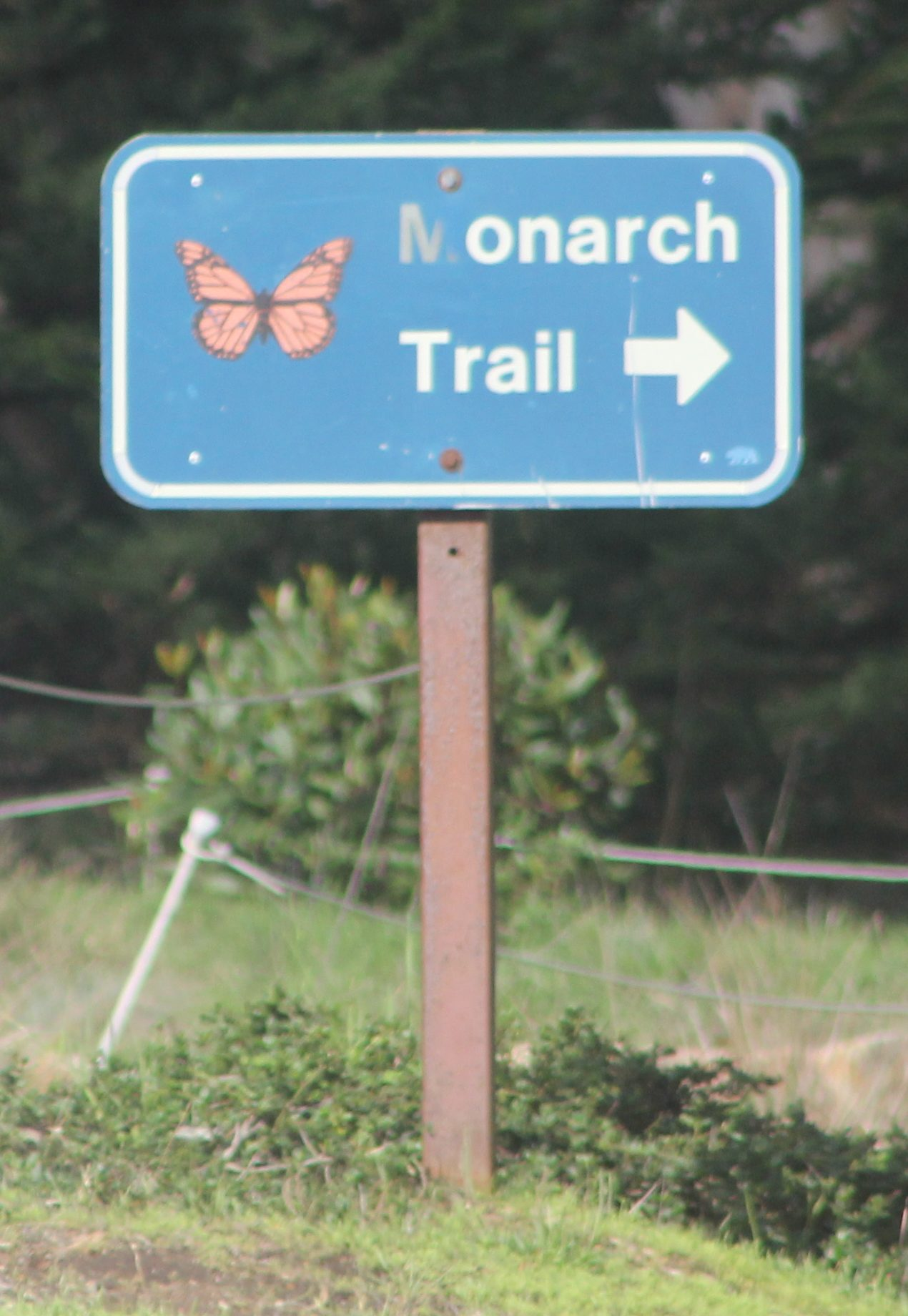 monarch trail