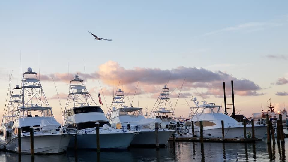 Key West's finest Location - Location is what makes A&B Marina the premier dockage option in the Keys.