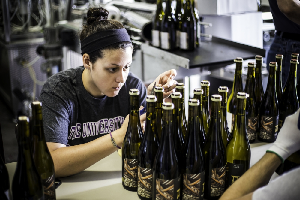 corking and dipping the bottles