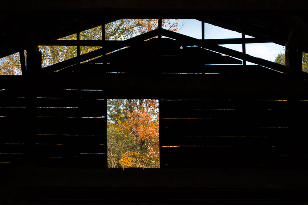 A barn with a view